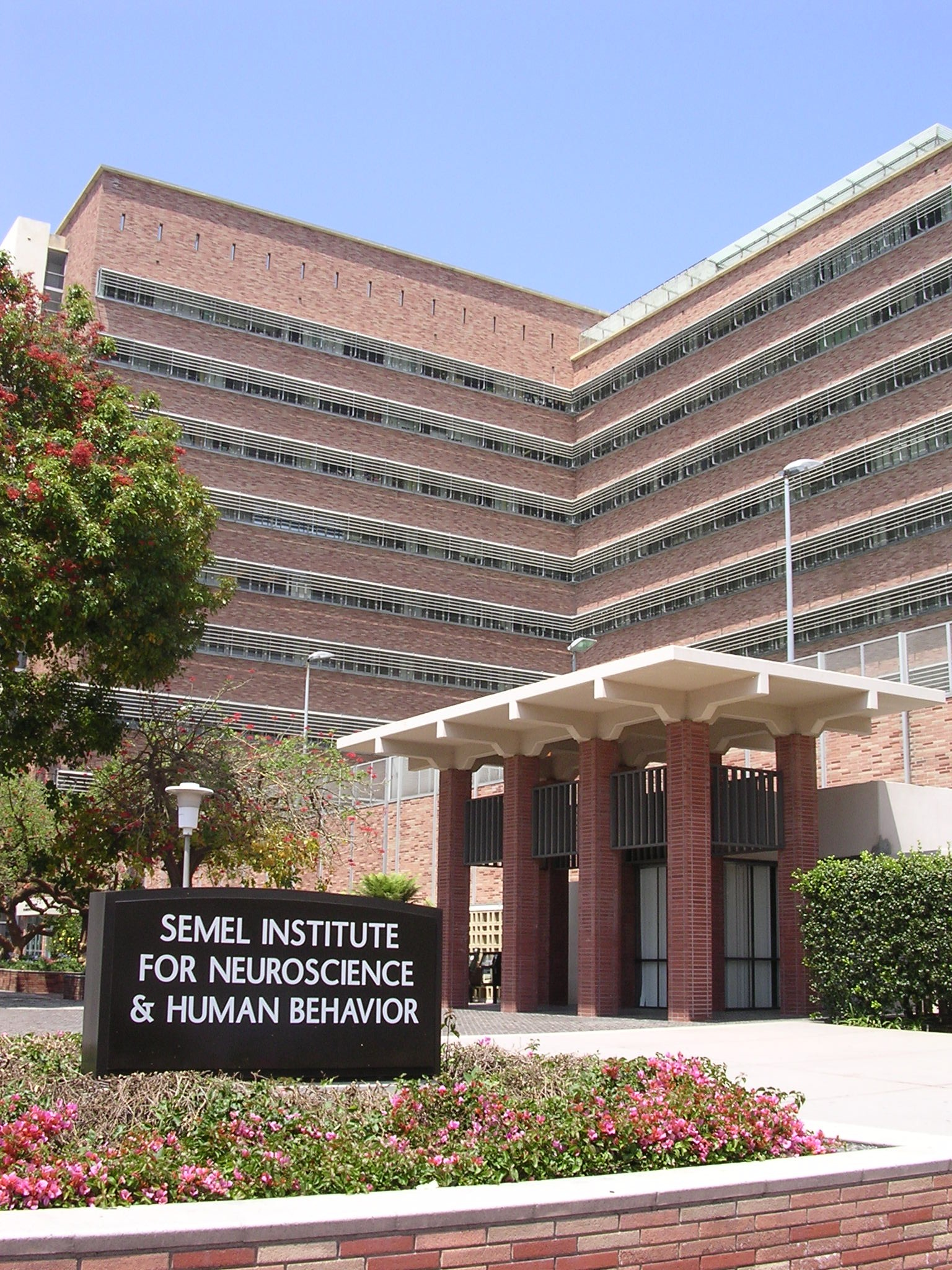 Ucla Campus Map Semel Institute For Neuroscience And