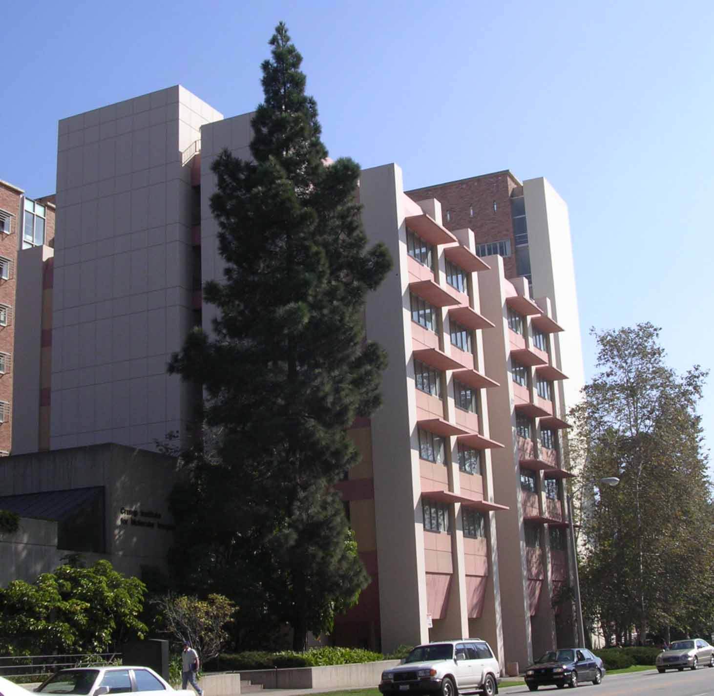 Neurological Disorders - UCSF Medical Center